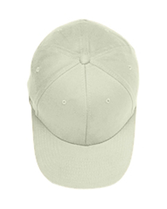 Natural Brushed 6-Panel Cap