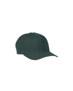 Spruce Wooly 6-Panel Cap